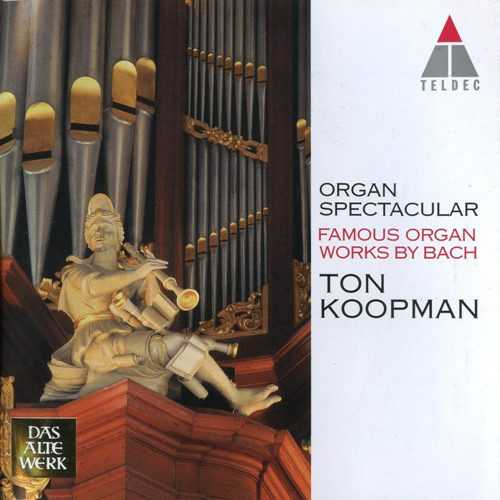 Koopman: Bach - Organ Spectacular (DVD-A)