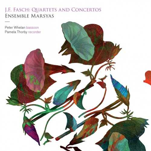 Fasch - Quartets and Concertos (24/192 FLAC)