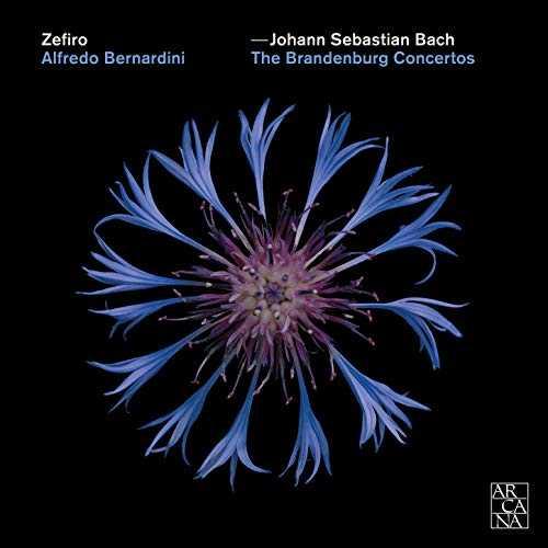 Zefiro, Bernardini: Bach - Brandenburg Concertos (24/96 FLAC)