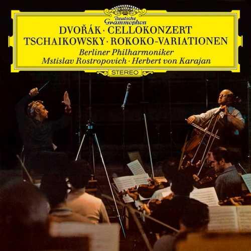 Rostropovich, Karajan: Dvorák - Cello Concerto, Tchaikovsky - Variations On A Rococo Theme (24/192 FLAC)