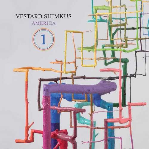Vestard Šimkus - America 1 (24/96 FLAC)