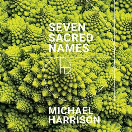 Michael Harrison - Seven Sacred Names (FLAC)