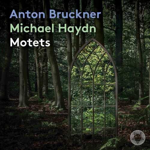 Anton Bruckner, Michael Haydn - Motets (24/96 FLAC)